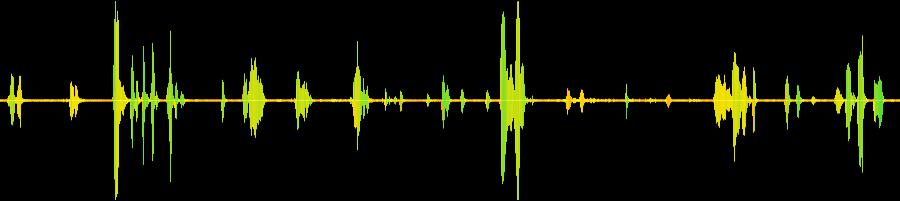 Adult sound wav