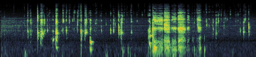 deepthroat sound