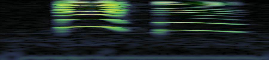 Freesound Quot Squeak3 Wav Quot By Propthis