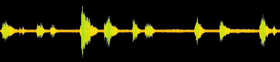 Coyote Howl Audio | apexwallpapers.com