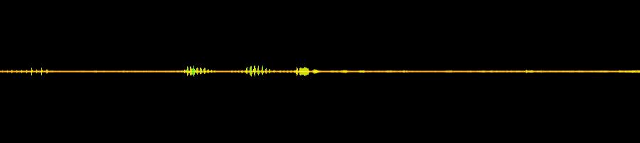 Parrot Whistles 01