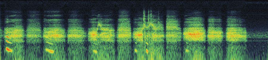 Freesound - -8356